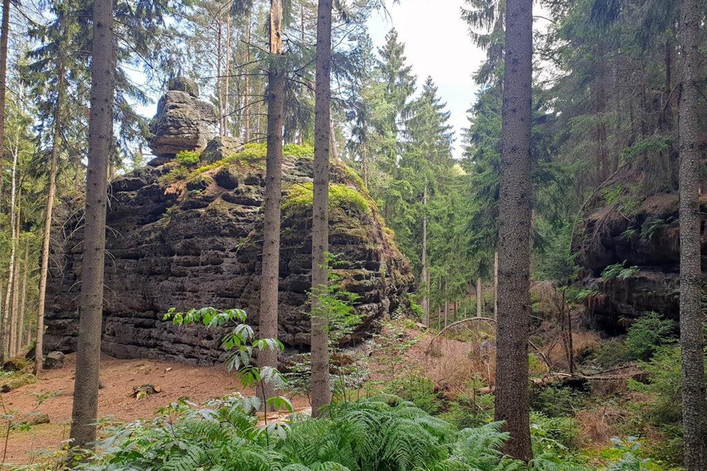 Fastenwandern Elbsandsteingebirge