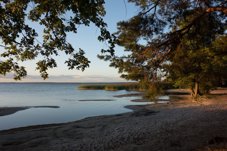 Deine Fasten Reise_Feldberger Seenlandschaft Ufer Strand uckermark